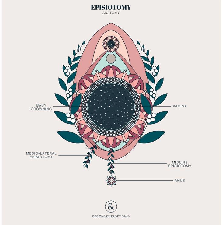 Anatomia da episiotomia