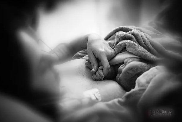 recem-nascido no colo da mãe após o parto